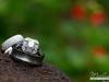 Wedding Rings - Nestldown, Los Gatos