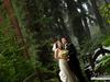 Amazement under the redwoods, Nestldown, Los Gatos